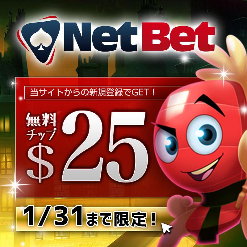 ネットベットカジノの紹介