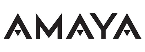 クリプトロジック(アマヤゲーミング)のロゴ